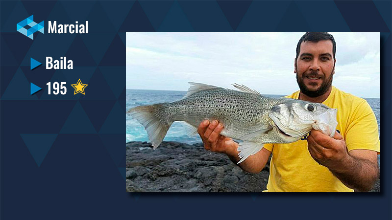 Marcial WeFish