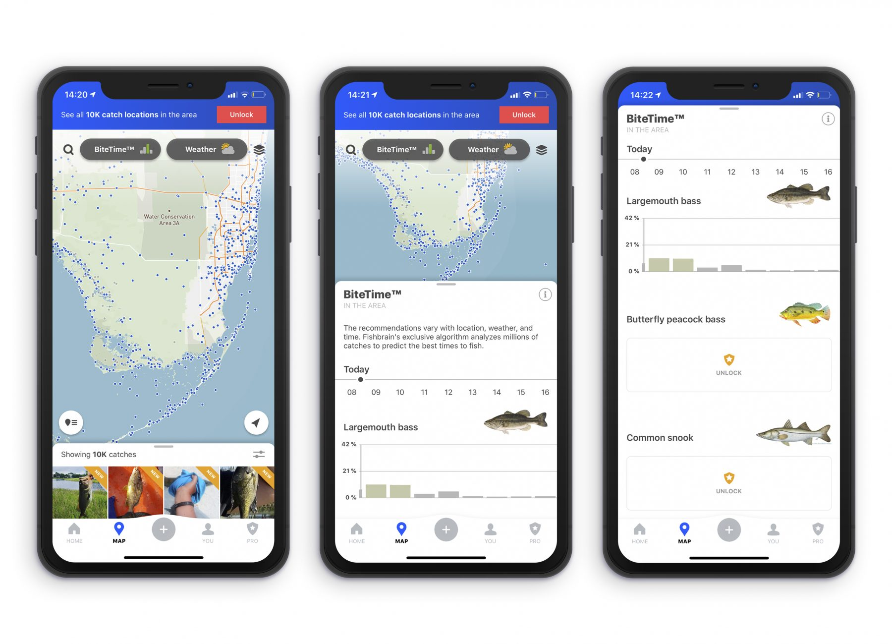 Fishing apps forecasts and predictions