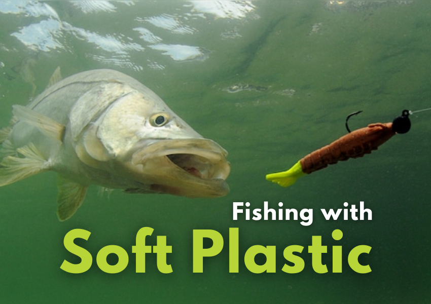 fishing with soft plastic